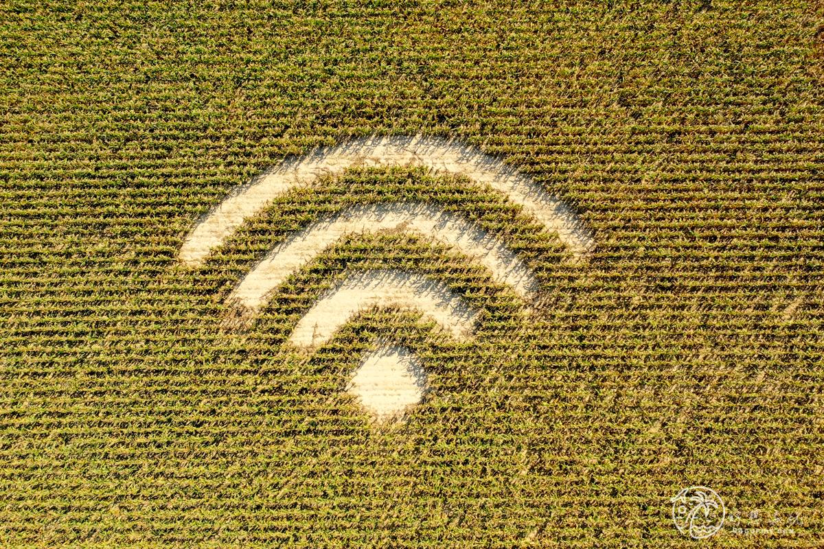 嘉義WiFi符號麥田圈