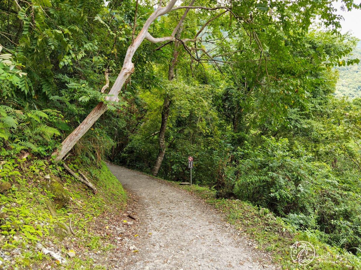 八通關古道瓦拉米登山步道